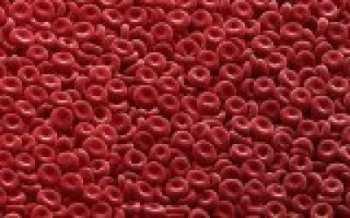 Эритроциты и гемоглобин