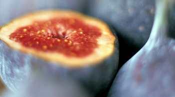 Инжир — первый плод Земли
